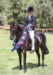 Ridden Riding Pony of the Year Elizabeth Farm Miss Bassey, exhibited the Taylor Family.