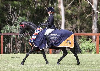 Champion Arabian Riding Pony & Ridden Riding Pony of the Year Karma Park Bellagio, owned by  Naomi Brincau and ridden by Emma Adams.