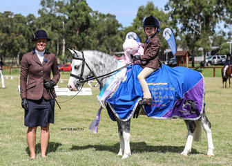 Runner-Up Mini Open Pony of the Year Eagle Park Bazzinga, exhibited by Cheree & Ruby Ventham