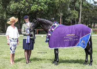 Show Hunter Riding Pony of the Year Daisy Patch Witchery, exhibited by Alison Doyle, pictured with judge Jane Gardner.
