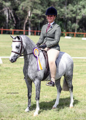 Reserve Champion Show Hunter Mare or Filly Armanii Park Buttons & Bows, exhibited by the Morelli Family.