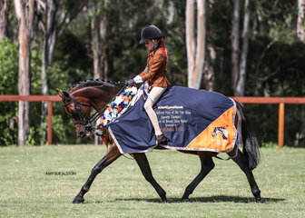 What a day for Corndale Kiss & Tell, exhibited by Kylie Hughe, winning Champion Ridden Show Hunter Gelding, Ridden Show Hunter Riding Pony of the Year & Supreme Champion Ridden Show Hunter.