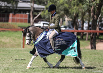 Runner-Up Champion Ridden All Breeds Exhibit Pant-Y-Ffynon Cappuccino & Sarah Withers