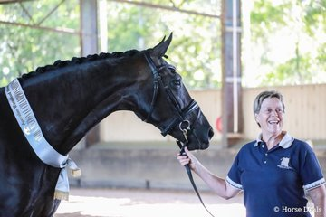 0008 Hollands Bend Shangri-La by Sezuan out of Hollands Bend Regalite (Royal Classic (IFS)) owned and shown by Judith Smith. Image Kate Turnbull