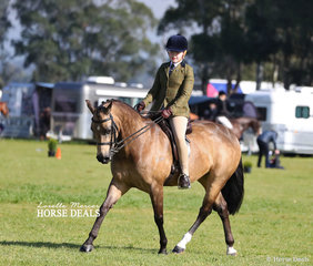 """Sophie Stewart and """"Avondan Park Little Miss Devine"""" working out in the Child's Show Hunter Pony 12.2-14hh class."""