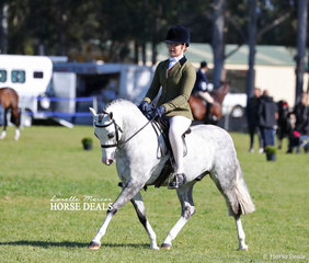 """""""Bamborough Bank Note"""" was declared Reserve Champion Show Hunter Pony, owned and ridden by Tammin Glover."""