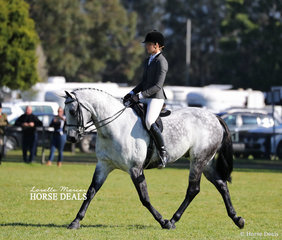 """Winner of the Adult's Show Hunter under 16hh """"Atomic Seduction"""" and Bree Starkey."""