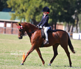 Second placegetter in the Novice Rider under 12 years class, Matilda Cape.