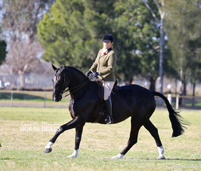 """Mel Gillies and """"Beyond Reasonabe Doubt"""" were class winners in the afternoon round of Show Hunter Hack classes."""