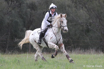 C Mcgufficke out on course with Cayuse Dun InA FLash