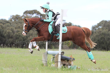 Looking wonderful in their XC colours  M Ozolins and Rivington Zaza