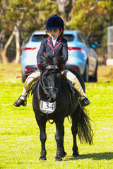 Despite an unlucky incident the day before little Mercedes Smethurst was determined to compete at the O.T.B. Show Society show. Mercedes gorgeous Shetland Carreg Wen Galliano carried her to second place in the rider under 8.