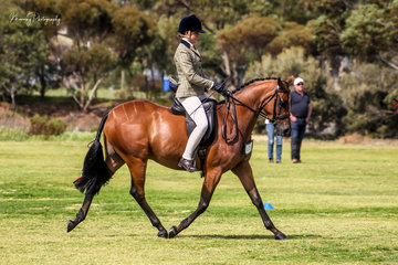 Ashlee Viceban did a super job on her young brilliant moving Sanlirra Obligation at his first show to be awarded 2nd place in the Newcomer and First Season show hunter galloway events.