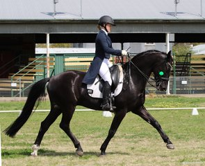 Jessica Clark on the stallion Desert Storm at their first competition together as a combination