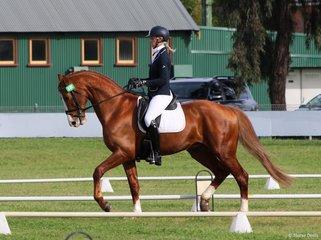 Jess Somerville on the stallion  Loxley's Hit
