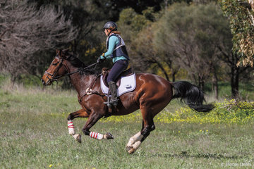 4th place in the 80 Div 2 was claimed by Sonia Steinemann riding 'Star Light Eclipse'.