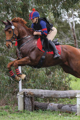 Lauren Stojakovic riding 'Tattoo You' placed 5th in the 65 Div 2.