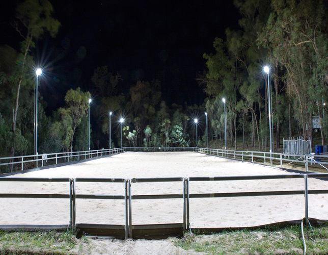 """Lighting is to enable the safe movement of both horse and rider appropriate to the standards of participation."""