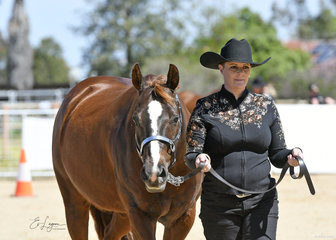 Andie McIntyre and Heez Got The Touch, in the Improver Showmanship class.
