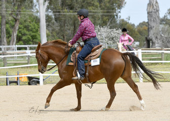 Jacinta Read riding Acres Desert Lair in the Intermediate Ranch Riding.