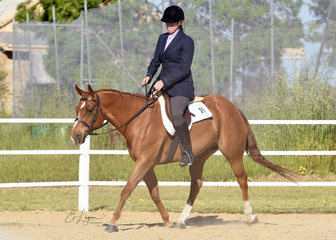 Kimberley McTaggart and RQH The Joker, in the Improver Hunter Under Saddle.