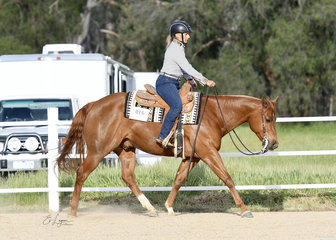 Liz Keating riding A Lil Midnight Chardonnay in the Open Ranch Riding.