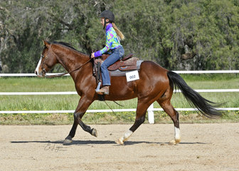 Willow Young on Royal Blue Gun, in the Youth Ranch Riding