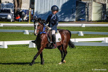 Harry Manning and 'Rivington Little Bird' were able to mix it with the adults winning the Open 50cm and 65cm classes.