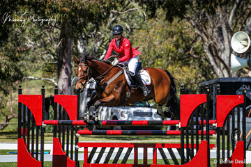 """Wendy Schaeffer on one of her multiple rides for the day; 'Sparkling Sun' on their way to a 3rd in the Bronze Cup. Wendy was also the winner of the Silver Cup on board 'GittaBella"""""""