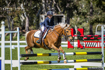 Mia Ozolins riding 'Fourwinds Peppermint' making her way to 4th place in the Prancing Pony Brewery 80cm