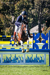 Emma Crowder and 'Valuers' – Winners of the Prancing Pony Brewery Open 80cm