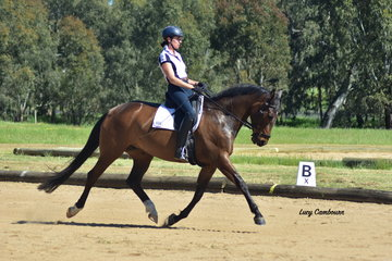 Megan Keir and Revelwood Queens County won the CR Medium 4A