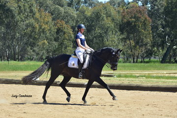 Megan Bryant riding First Dance won the PSG and Intermediate 1 tests.