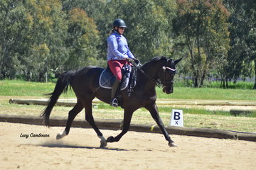 Amba McGoldrick riding Maharani won the CR Medium 4B