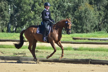 Sophie Grainger riding Mijay Final Trick won 1st in the YR Preliminary 1A and 2nd in the YR Novice 2A.