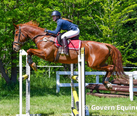 Caitlin Crawford and Bellhaven Roxy had the lightest of touches at the final fence in the jump off of the Grand Prix but the rail came down leaving them out of the placings