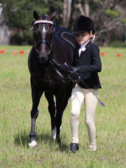 Ellie Willis and Gus working out to place in the Led Pony