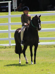 Reserve Champion Hunter Pony exhibited by Gracie Letts