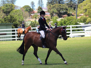Champion ridden Derivative Tremayne Royal Opera ridden by Charlee Anthony