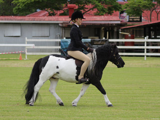 Floyd and Lucey Sydney in the small hunter pony