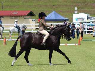 Grace Letts and VL Serendpity in the Childs Hunter