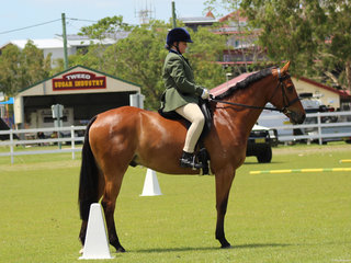 Saffron Anderson and Boonara Jordan reserve Champion Hunter hack
