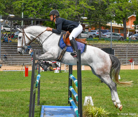 Melissa Turner with Rosthwaite Cassanova who improved over the weekend, pictured here in the 1m on day 2