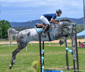Michael Cross with the striking and athletic Emmaville Da Vinci