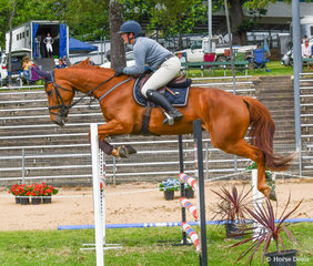 Sandra Kenny has a very exciting young horse in the making with Rotherfield Areeva. This tall athletic mare has some serious scope.