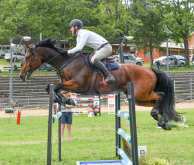 Robert Grimson and Cooper in the 1.20m on day 2