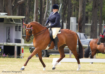 Enjoying her first show back after the birth of her Son, Natasha Byrnes is pictured riding DP Player that won Champion Open Hack