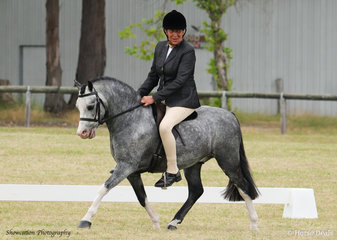 Shelley Penny is pictured aboard her Eagle Park Player during the judging of Champion Show Hunter Pony