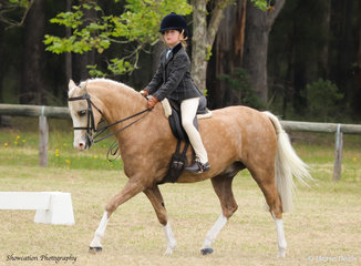 Oak Park Toulouse took great care of his little rider Layla Young as they went on to claim Champion Show Hunter Pony