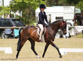 Emily Kelly and her Durraly Finnegan are shown during the judging of the Champion Open Pony where they went on to be sashed Reserve Champion